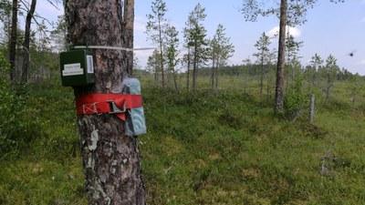 YMPYRÄ-hanke yhdistää ympäristöekosysteemin ympärillä toimivat tahot