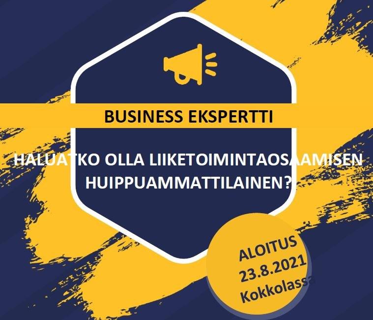 businessekspertti.JPG